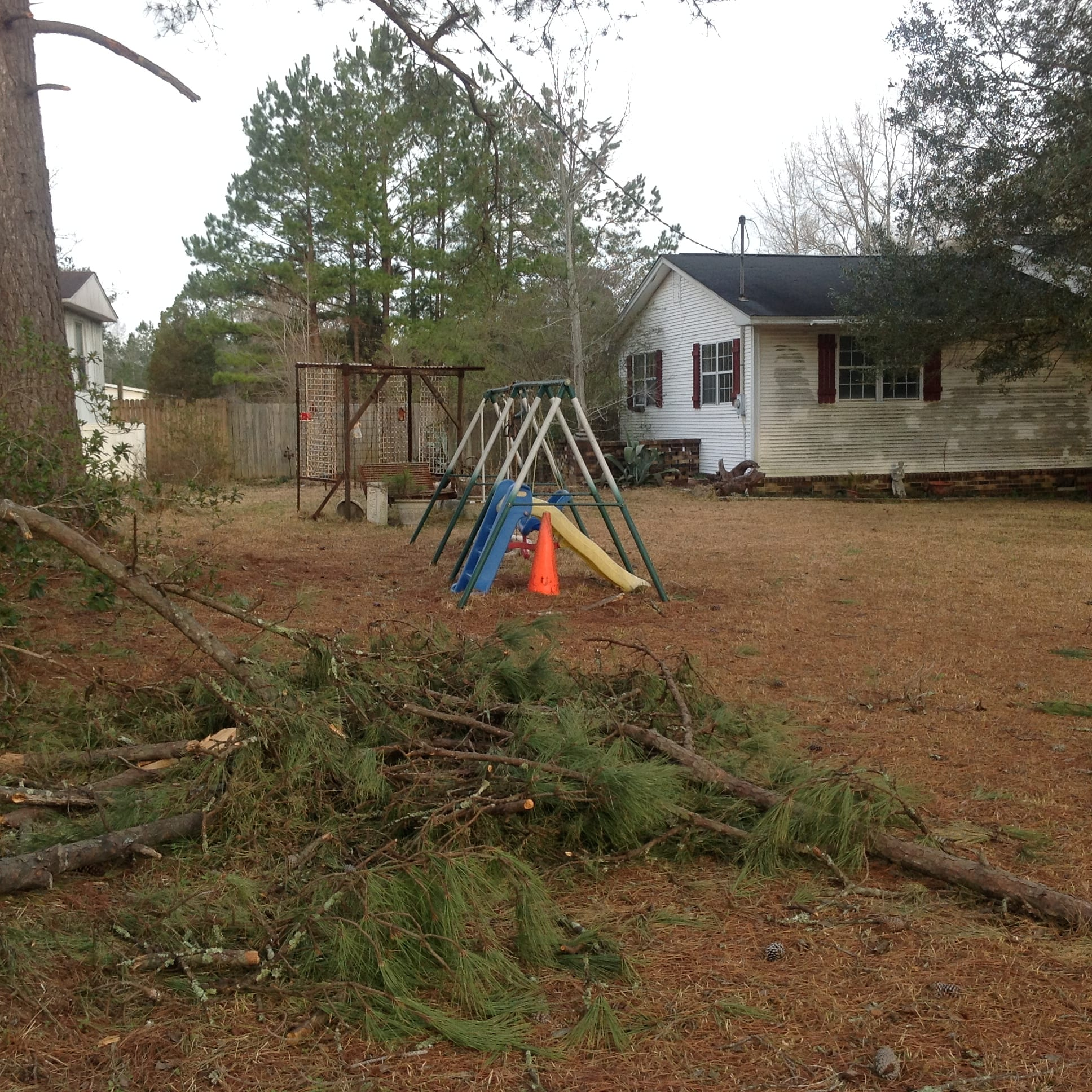 Debris Removal Services Landscaping Clearing Trimming